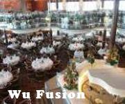 Wu-Fusion