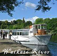 Waikato-River-Cruise